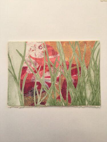 grasses masking pink background