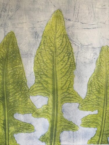 Thistle leaves used as a stencil in a mono-print.